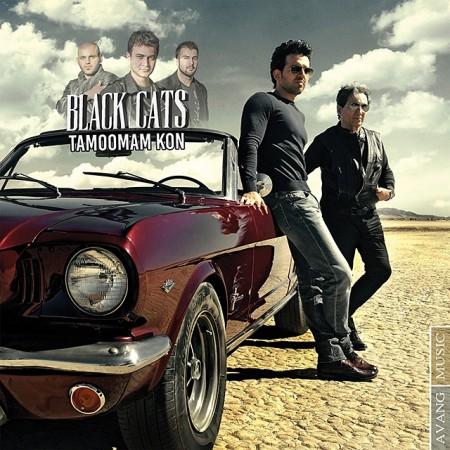 Black Cats - Tamoomam Kon