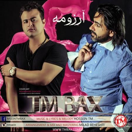 TM-Bax-Arezoomeh