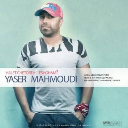 یاسر محمودی
