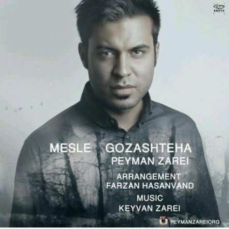 Peyman Zarei - Mesle Gozashteha