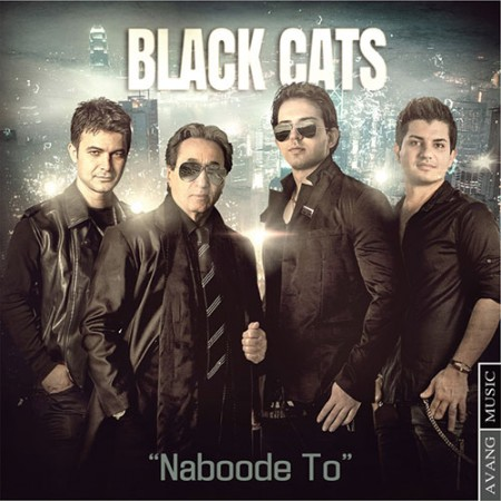 Black-Cats-Naboode-To