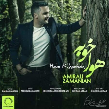 Amir-Ali-Zamanian